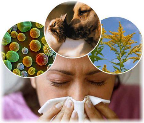 Как отличить аллергический ринит